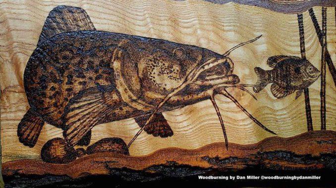 Flathead Catfish Q A Rambling Angler Outdoors